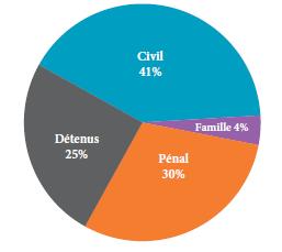 Diagramme à secteurs qui illustre les proportions des appels en droit civil, en droit de la famille, en droit pénal et des appels interjetés par des détenus reçus en 2013.