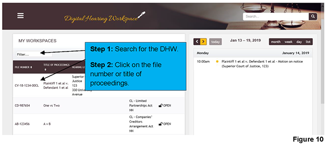 "The workspace of cases that have been assigned to you can be accessed on the homepage of the DHW platform. Use the filter field in the left-hand corner of the ""MY WORKSPACES"" section to look for your case. Clicking on the file number or title of proceedings allows you to access the workspace."